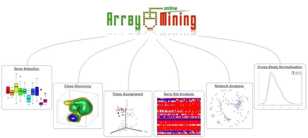 statistical analysis online